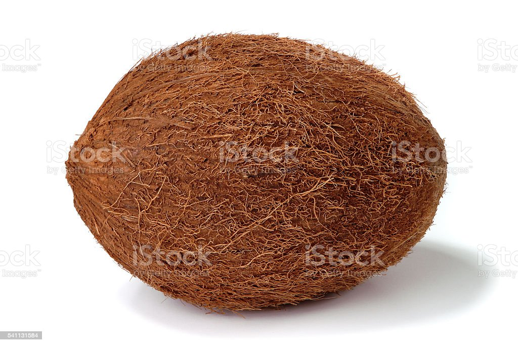 Coconut closed on a white background stock photo