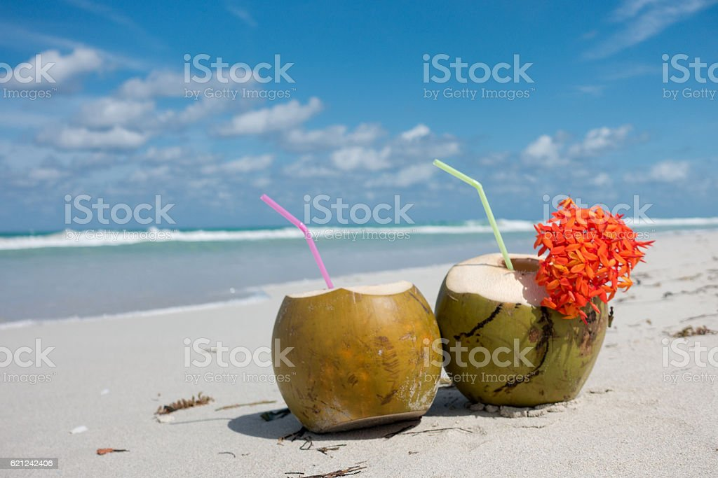 Coconut Drinks On Beach In Cuba Royalty Free Stock Photo