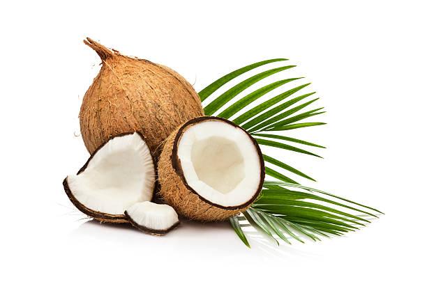 coconut fruit isolated on white background - hindistan cevizi tropik meyve stok fotoğraflar ve resimler