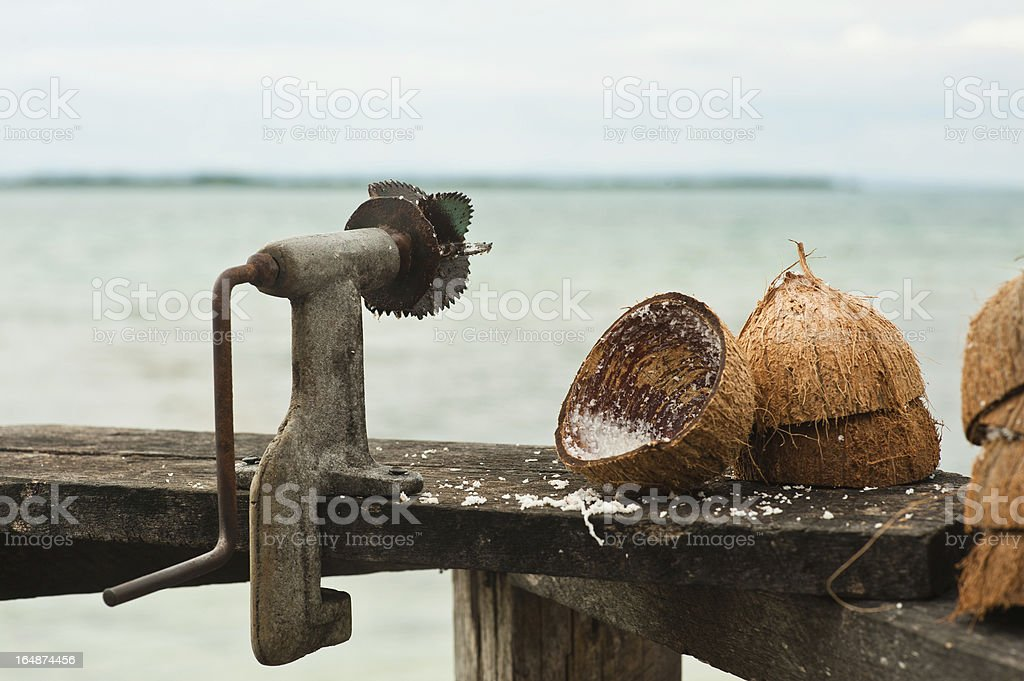 coconut grinder royalty-free stock photo