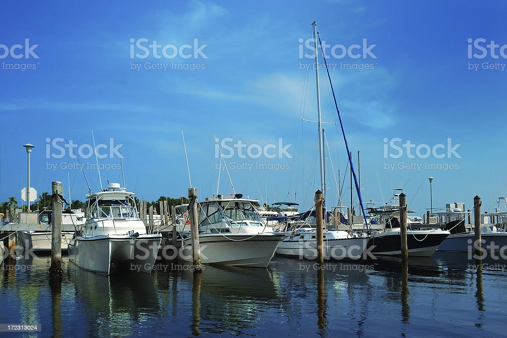 coconut grove marina in miami 3 royalty-free stock photo