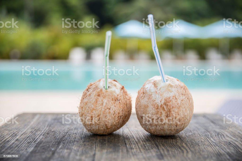 Coconut Holiday stock photo