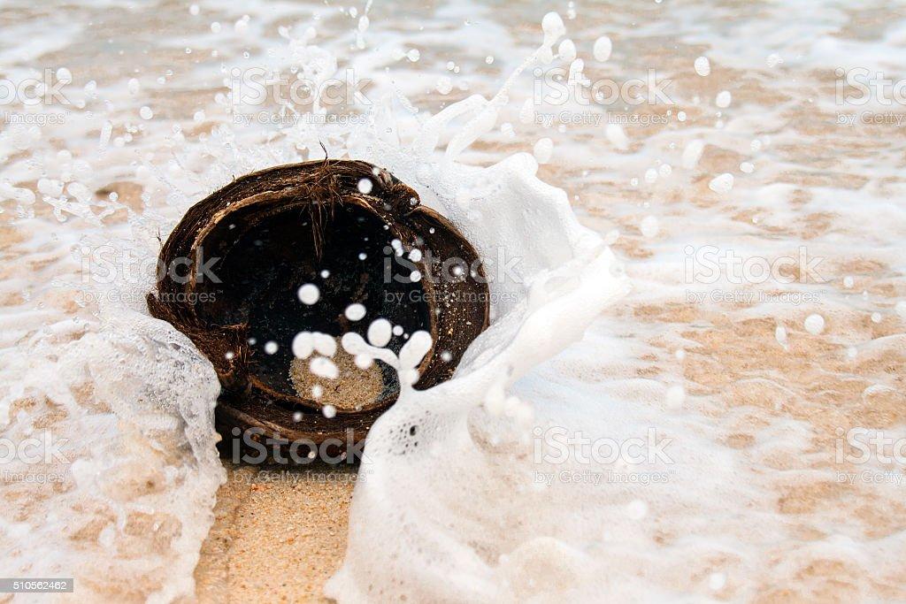 Coconut in the sea stock photo