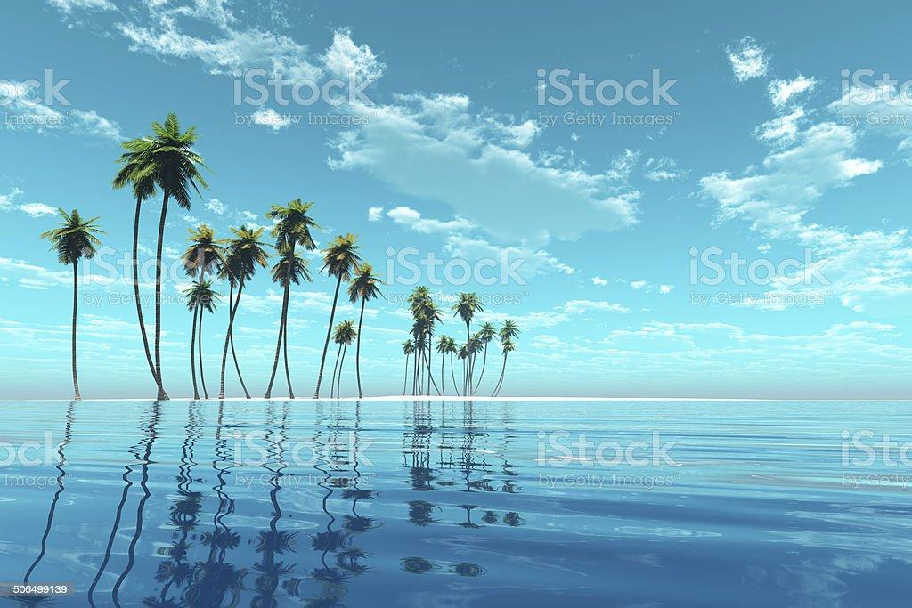 coconut island stock photo