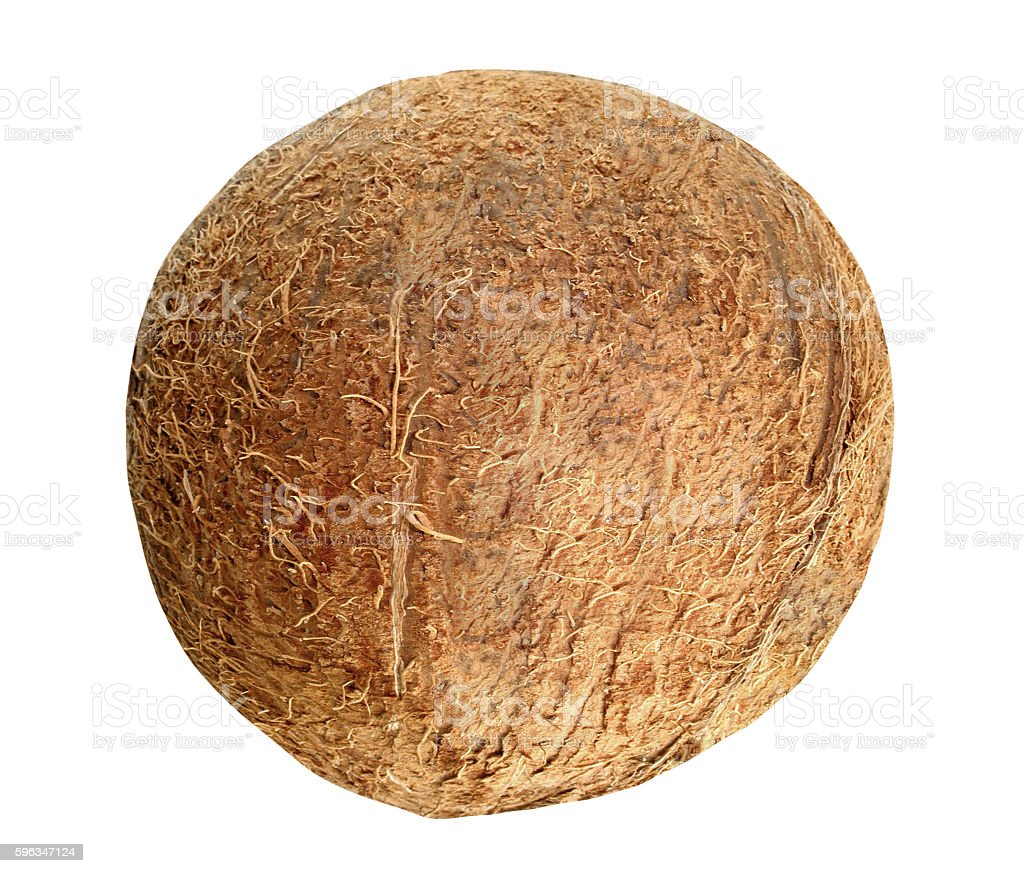 Coconut isolated on white royalty-free stock photo