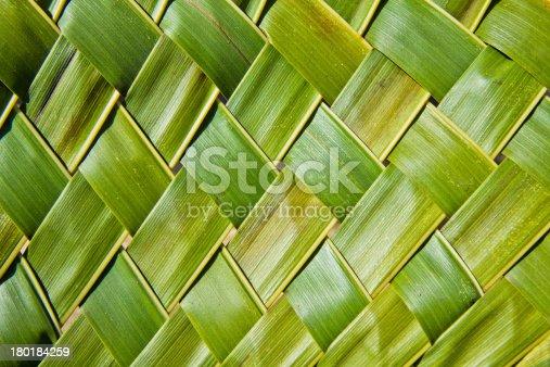 istock coconut leaves 180184259