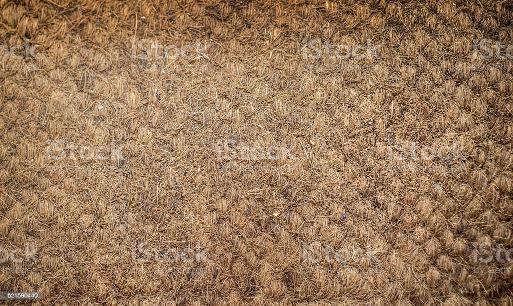 coconut matt texture in brown natural stock photo