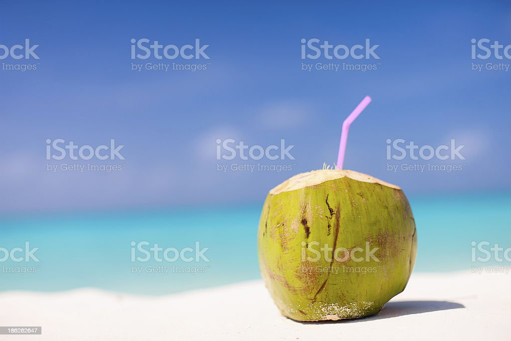 Coconut on a tropical beach stock photo