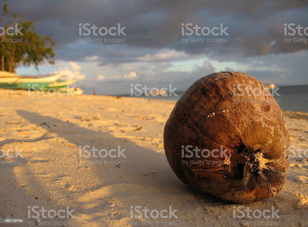 Coconut on Beach stock photo