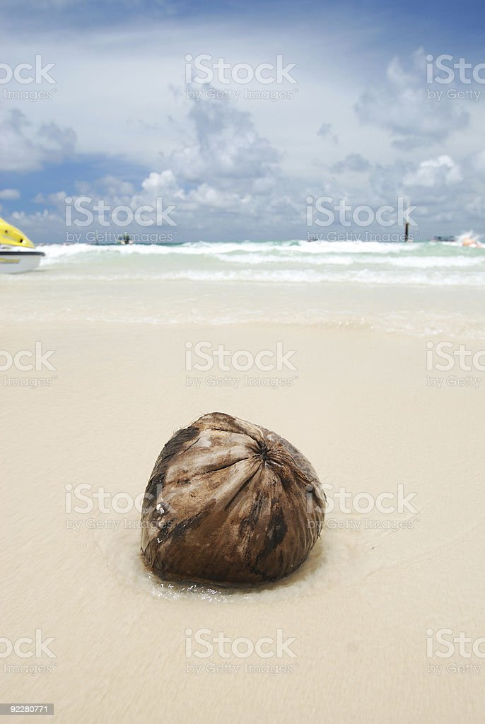Coconut on beach royalty-free stock photo