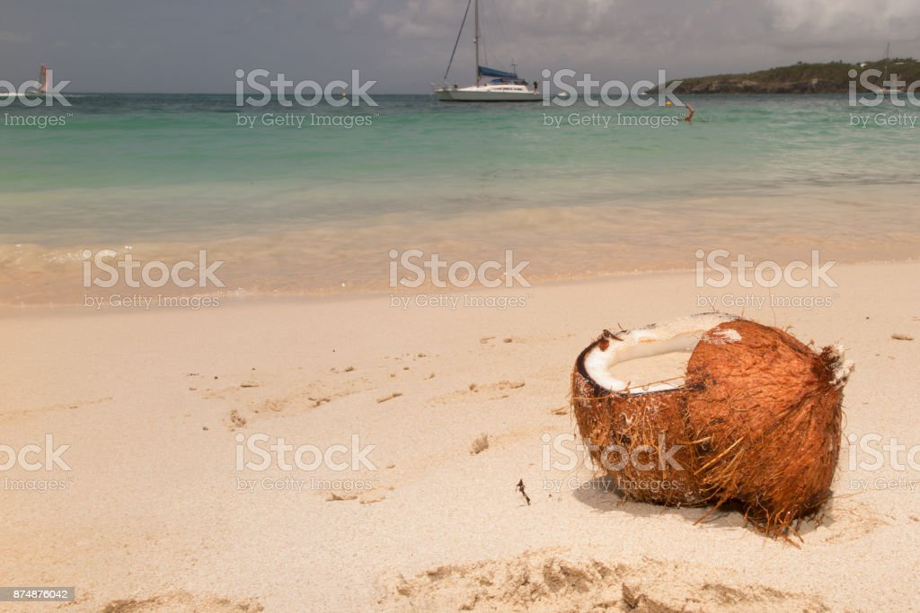 Coconut on the tropical beach stock photo