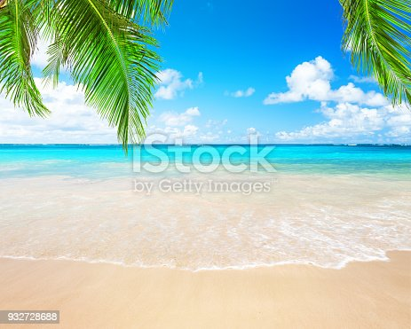 istock Coconut palm trees and blue sky and sea 932728688