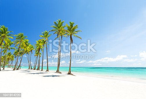 istock Coconut Palm trees on white sandy beach in Punta Cana, Dominican Republic 1041914220