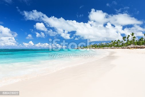 istock Coconut Palm trees on white sandy beach 530423022