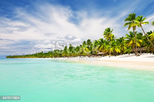 istock Coconut Palm trees on white sandy beach 547517604