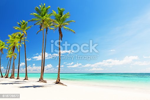 istock Coconut Palm trees on white sandy beach 618726572