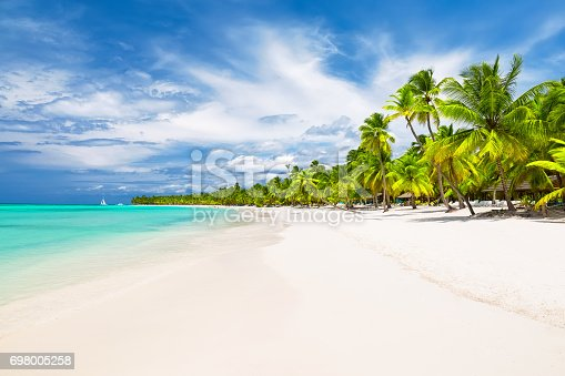istock Coconut Palm trees on white sandy beach 698005258