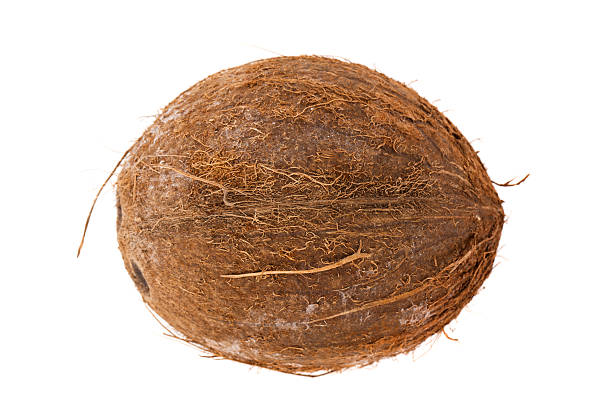coconut - aluxum stock pictures, royalty-free photos & images