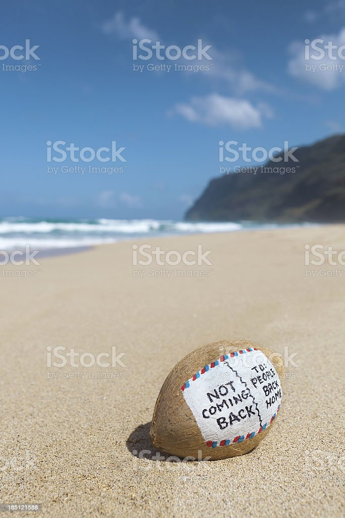 Coconut Postcard To Home from Tropical Paradise Beach Vacation Vt royalty-free stock photo