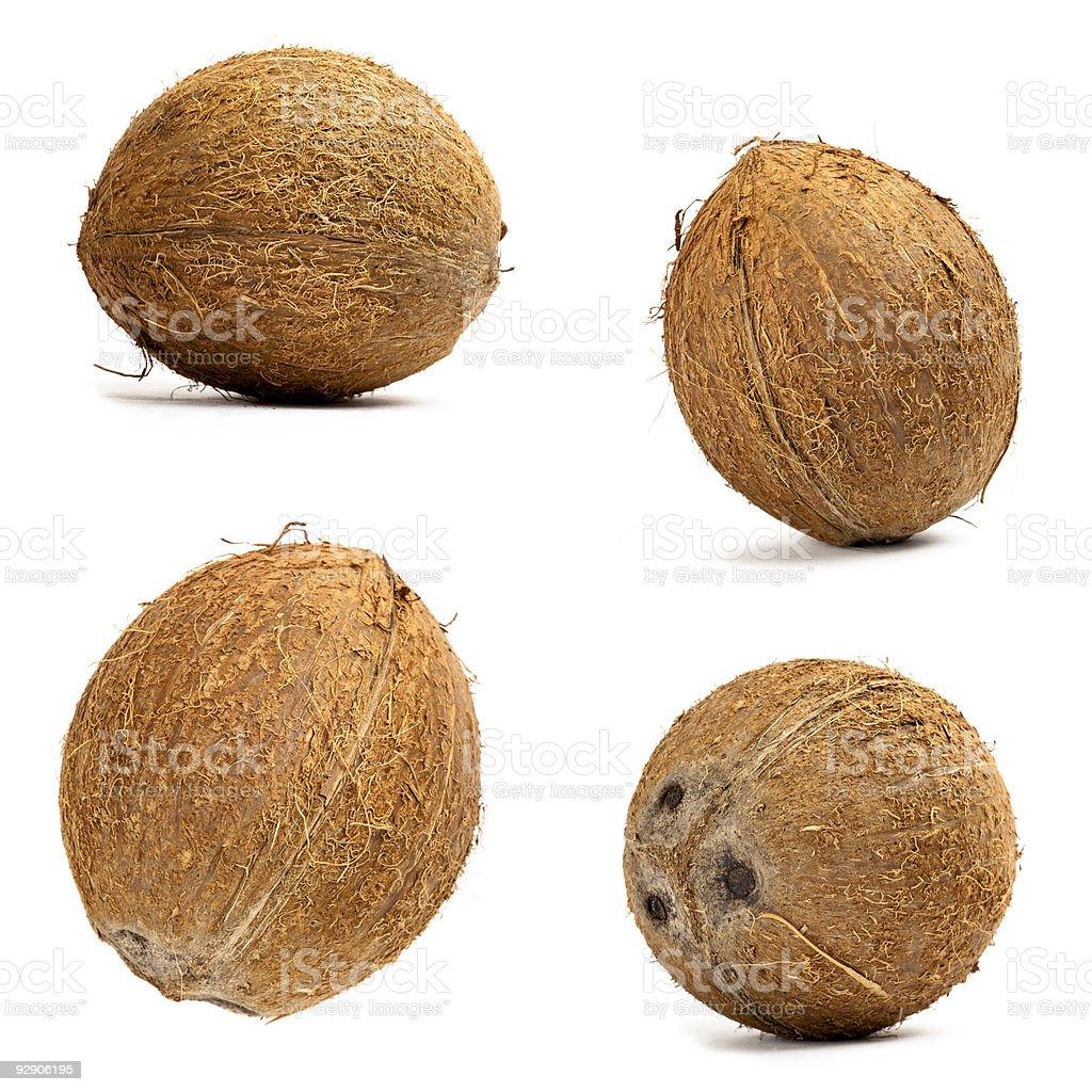 Coconut set stock photo