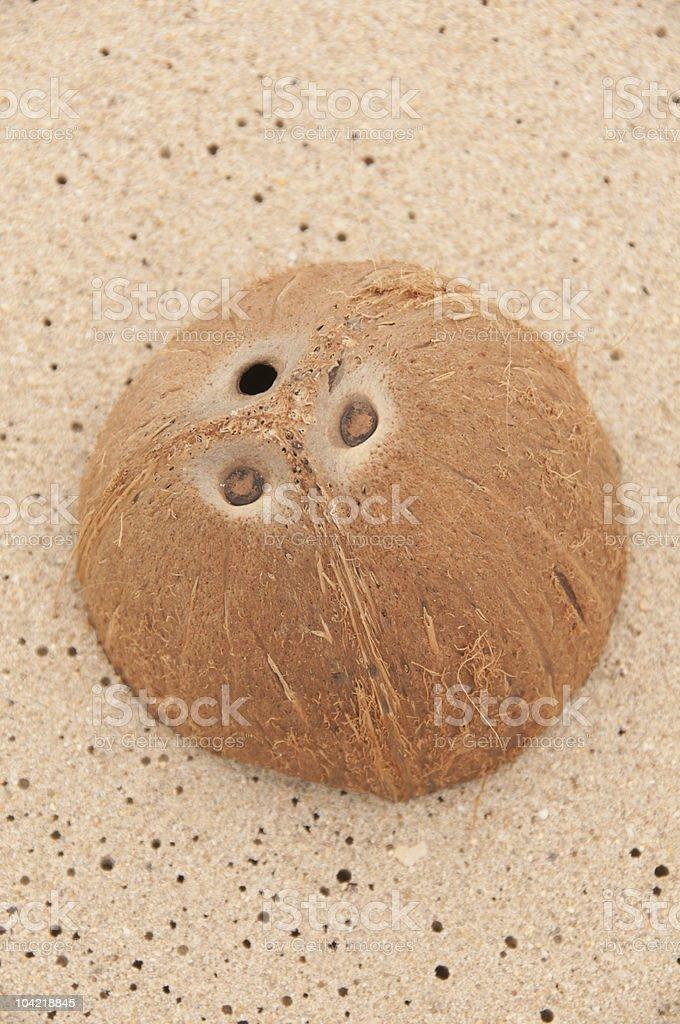Coconut shell on sandy beach royalty-free stock photo