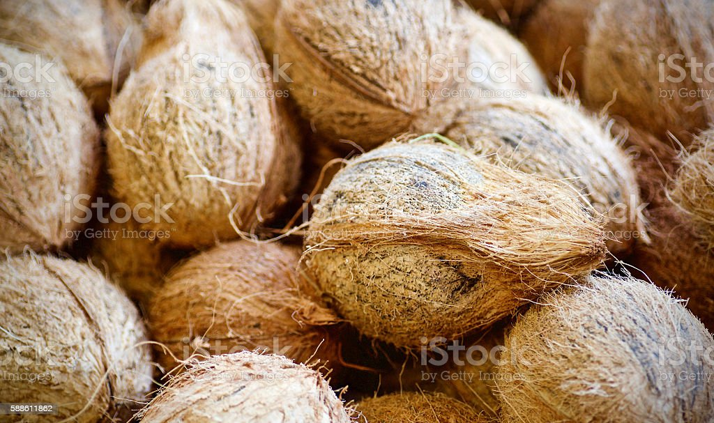 Coconut shells stock photo