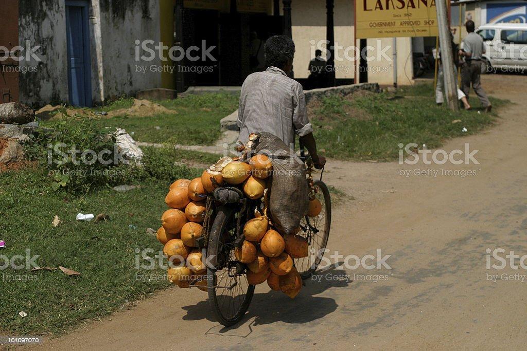 Coconut transportation royalty-free stock photo