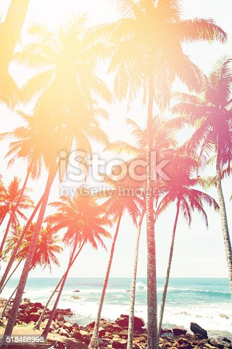 Coconut trees and turquoise Indian Ocean colorful toned. Shot taken with Canon 5D mk III near the Dondra lighthouse, Sri Lanka.