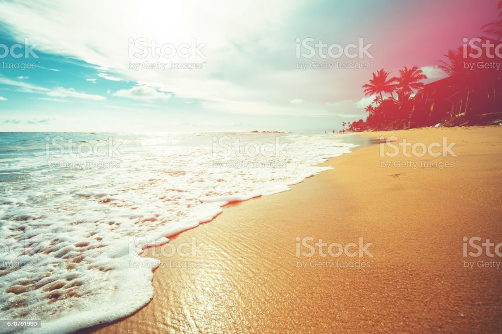 Coconut trees and turquoise Indian Ocean - foto stock