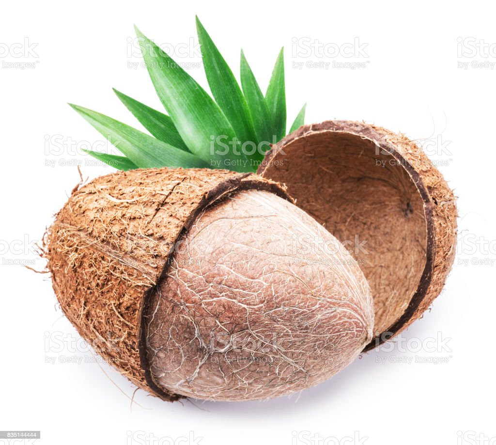 Coconut with leaf. stock photo