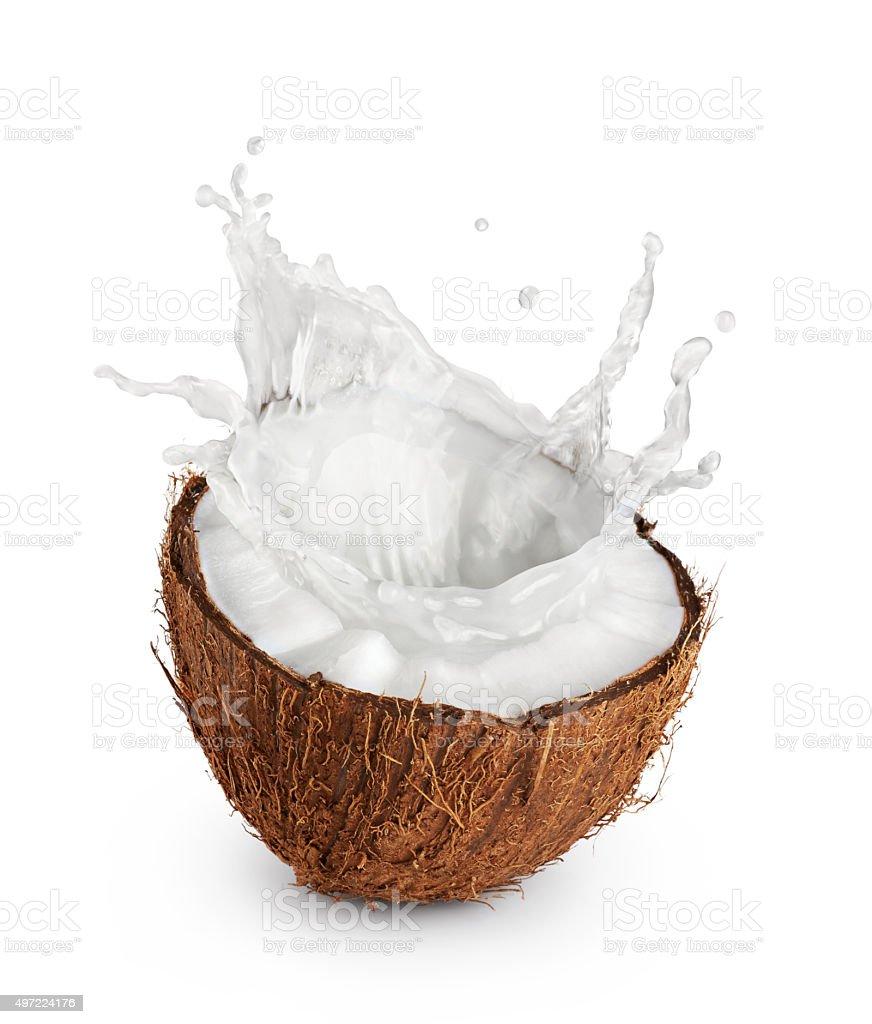 Coconut with milk splash on white background. stock photo