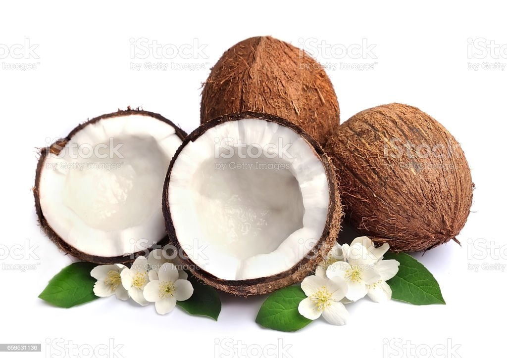 Coconut with white flowers stock photo