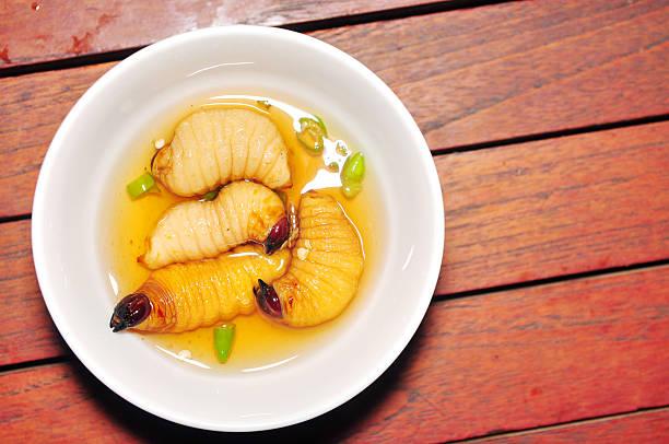 ver de noix de coco - jungle menu photos et images de collection