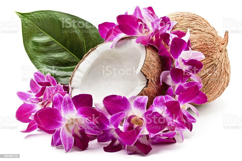 Coconuts and lei stock photo