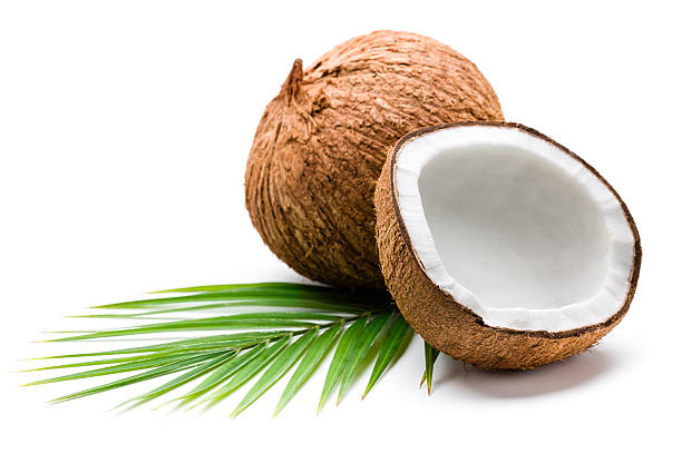 Coconuts and palm leaves stock photo