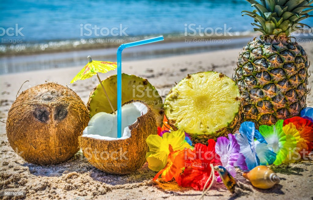 Coconuts and pineapple halves on the sand - Royalty-free Animal Shell Stock Photo
