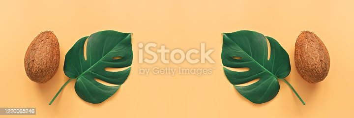 Coconuts and tropical leaves of monstera on a pastel yellow background, creative panorama layout. The concept of a beach holiday and travel. Top view, flat lay, copy space, border