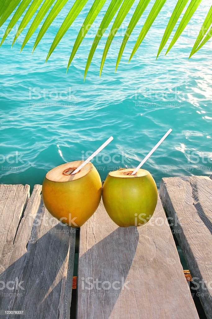 coconuts cocktail palm tree leaf in Caribbean royalty-free stock photo