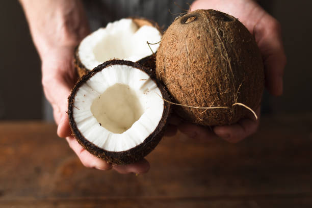 Coconuts holding in hands stock photo