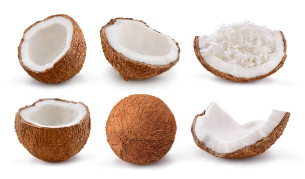 Coconuts isolated on white background. Collection. stock photo