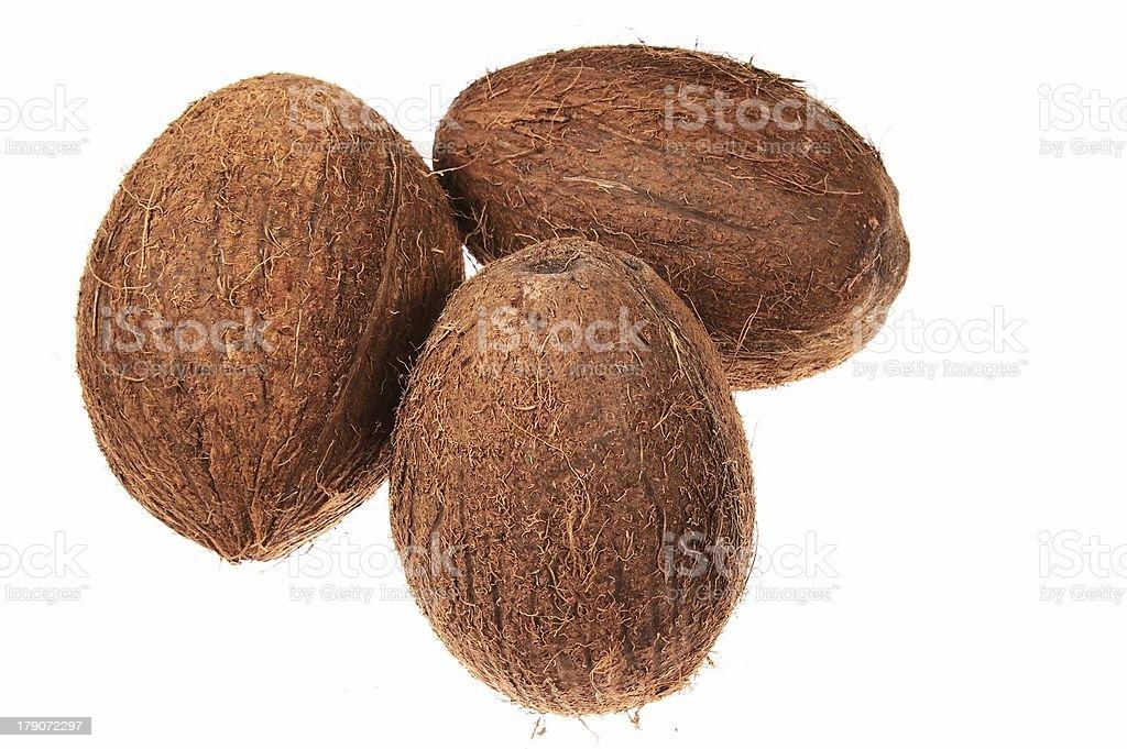 coconuts royalty-free stock photo