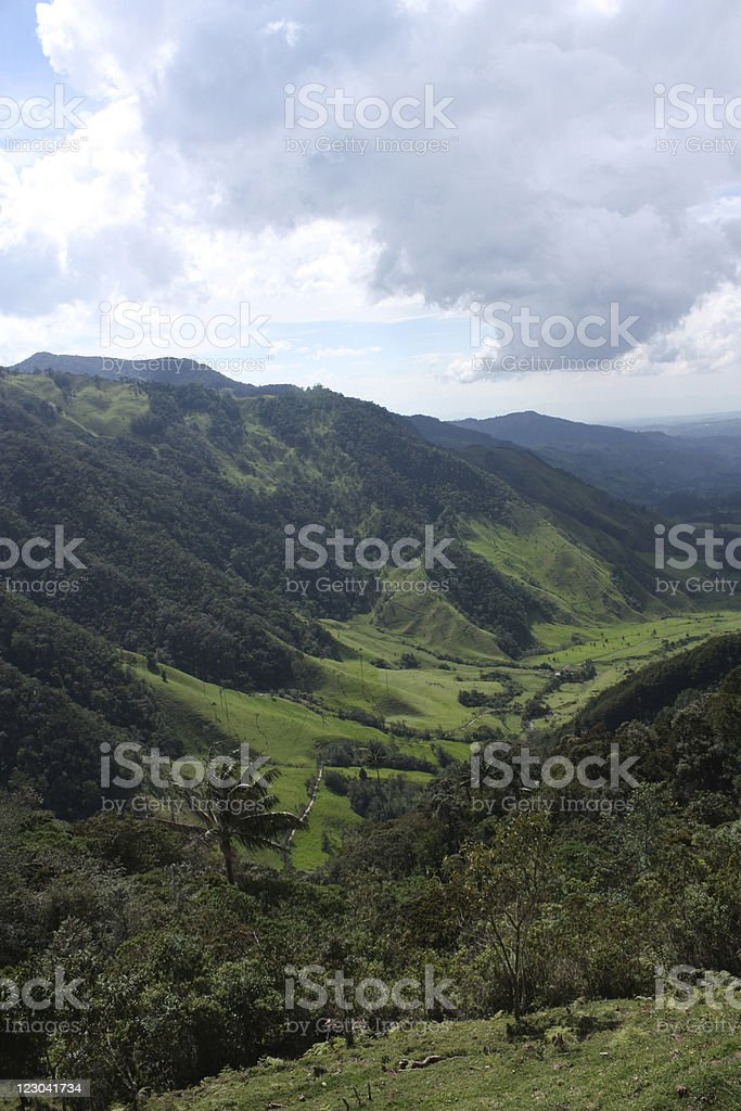 Cocora valley. Colombia royalty-free stock photo