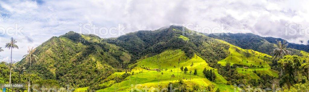 Cocora-Tal-Berge – Foto