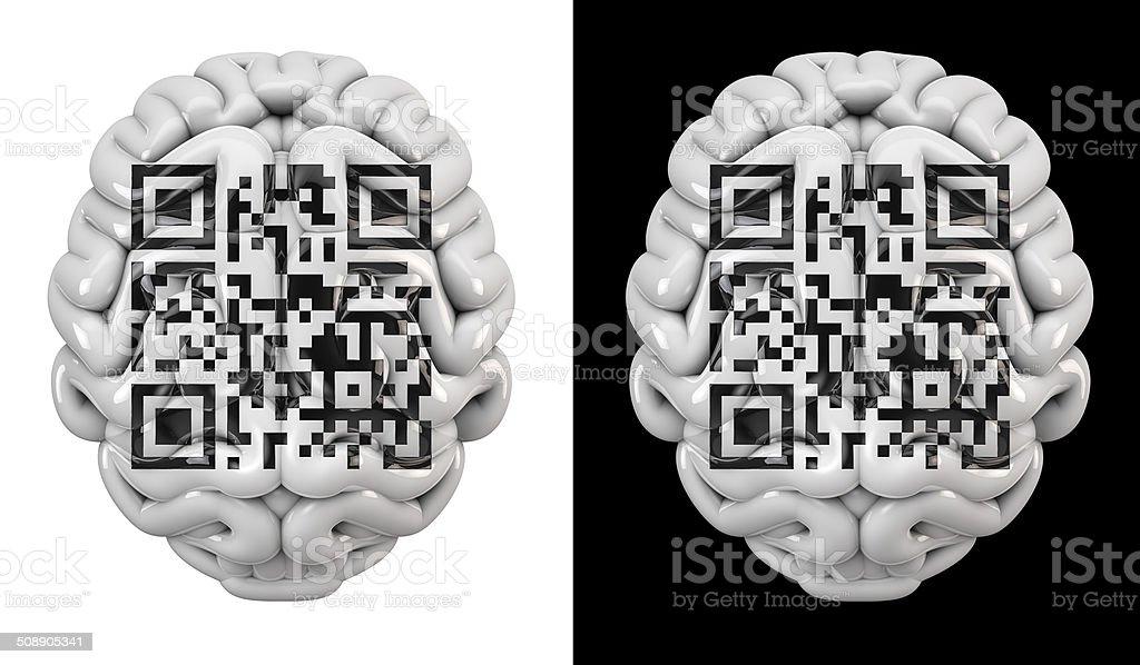 Qr Code Brain Stock Photo & More Pictures of Anatomy | iStock