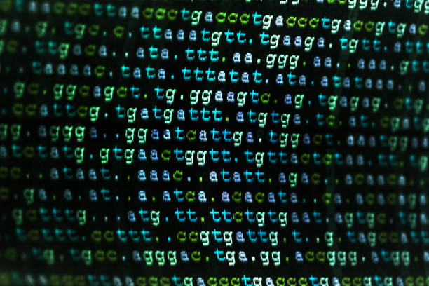 DNA code with black background DNA code with black background nucleotide stock pictures, royalty-free photos & images