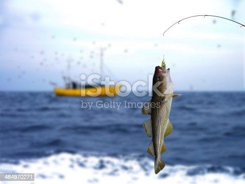 932662672istockphoto codfish 464970271