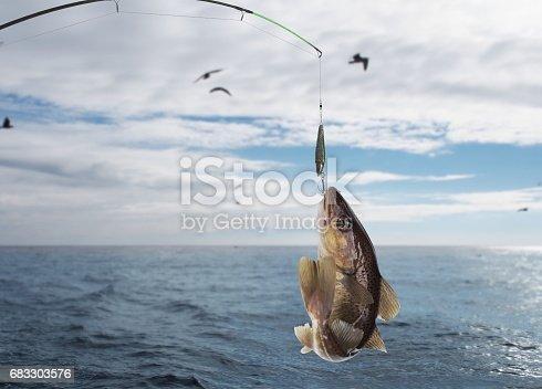 932662672istockphoto codfish 683303576