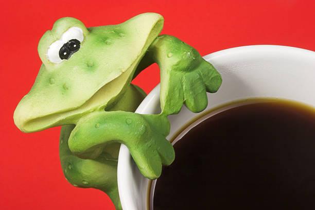 kaffee-frosch - decoupage kunst stock-fotos und bilder