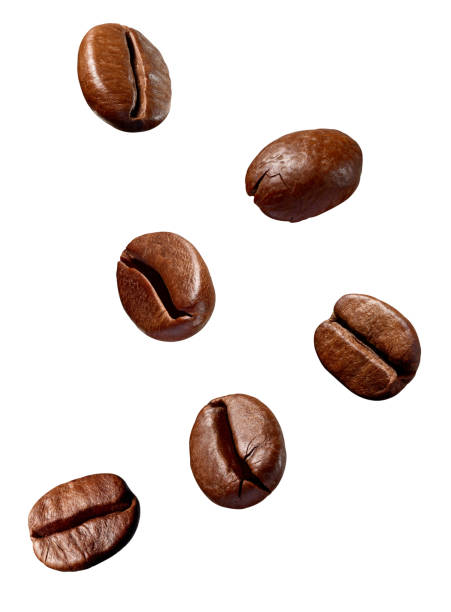 Coffee bean brown roasted caffeine espresso seed picture id1073182742?b=1&k=6&m=1073182742&s=612x612&w=0&h=dmuywgkvtxen 6jjp7of17706a1zxth19hdct9nuere=