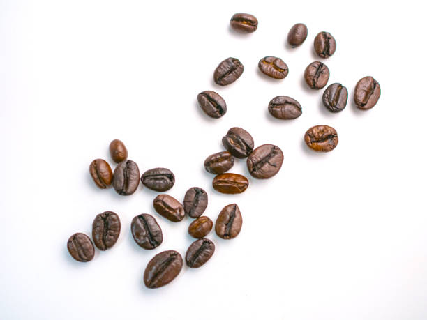 Coffee bean isolate on white background